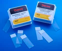 Superfrost™ Excell™ Microscope Slides