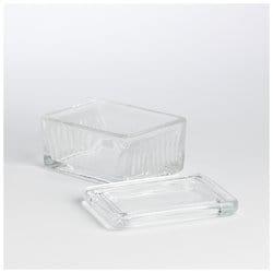 Shandon™ Horizontal Staining Jar, Horizontal staining jar, Holds 20 slides back-to-back