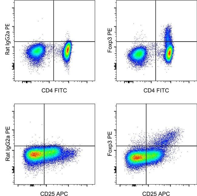 Identifying regulatory T cells using the Human Regulatory T Cell Staining Kit #2