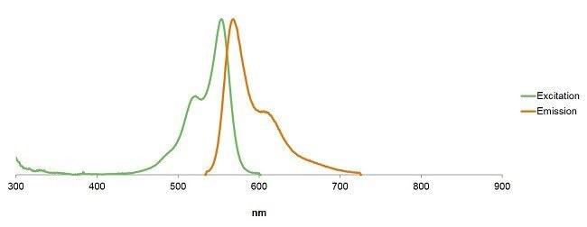 Alexa Fluor Plus 555 Phalloidin fluorescence excitation/emission spectra