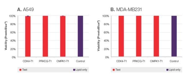 Optimized protocols provide minimal cell toxicity
