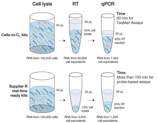 Cells-to-CT workflow comparison to other cell lysate reagents
