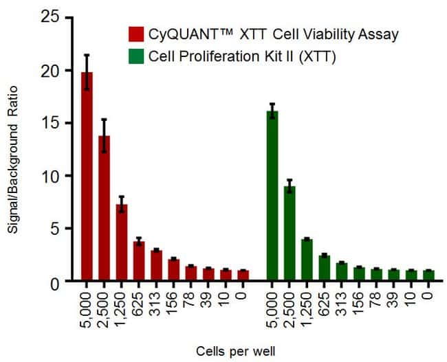 Viability determination using CyQUANT XTT or Cell Proliferation Kit II (XTT)