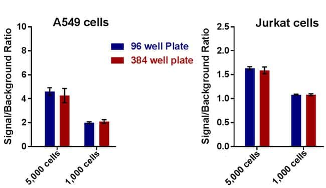 CyQUANT XTT generates consistent results in 96- or 384-well plates