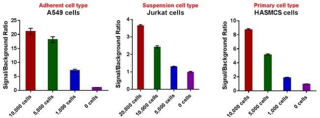 CyQUANT XTT performs across various cell types