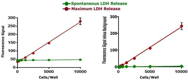 Determination of cytotoxicity with CyQUANT LDH Cytotoxicity Assay, fluorescence
