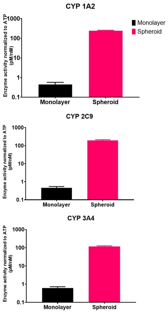 Basal CYP Activity in 2D and 3D HepaRG Cultures
