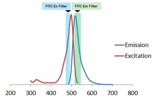 Fluorescence spectra of Image-iT Green Hypoxia Reagent