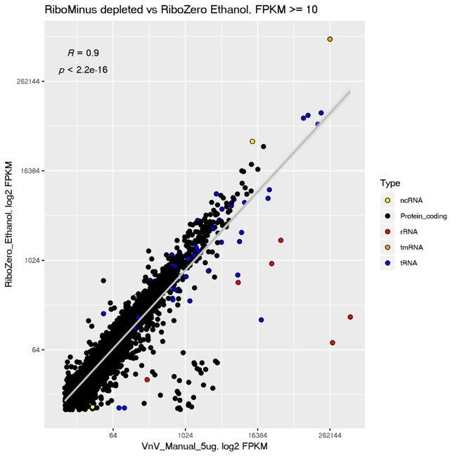 RiboMinus Bacteria 2.0 and Ribo-Zero (legacy kit) comparison