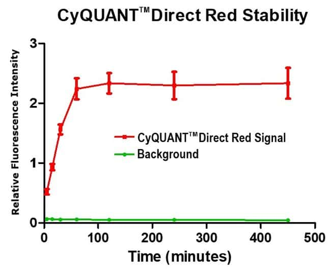 CyQUANT Direct Red assay signal stable for 7 hours