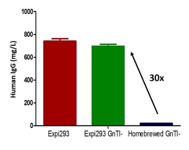 Protein yield of Expi293F GnTI– cells compared to HEK293S GnTI– cells