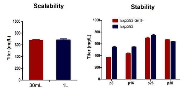 Scalability and stability of protein expression in Expi293 GnTI– system