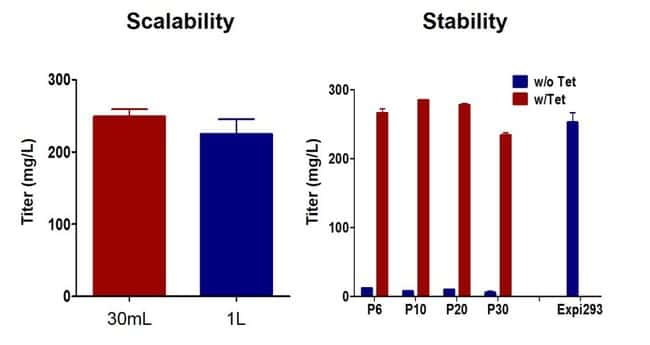 Scalability and stability of protein expression in Expi293 Inducible system