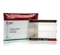 E-Gel™ 48 Agarose Gels with SYBR™ Safe DNA Gel Stain, 1%