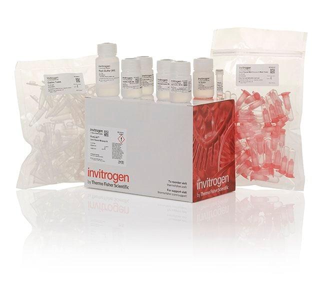 PureLink™ Quick Plasmid Miniprep Kit