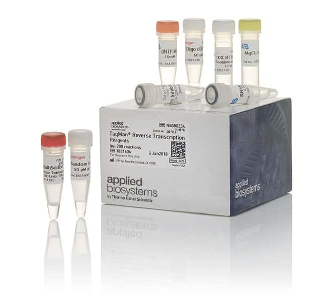 qc4 transcription Summary of genechip whole transcript assay protocol first cycle in vitro transcription using unlabelled summary of genechip whole transcript assay protocoldoc.
