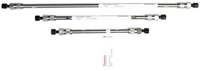 GlycanPac™ AXH-1 HPLC Columns