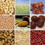 ImmunoCAP™ Seed, Legume and Nut Component Allergens