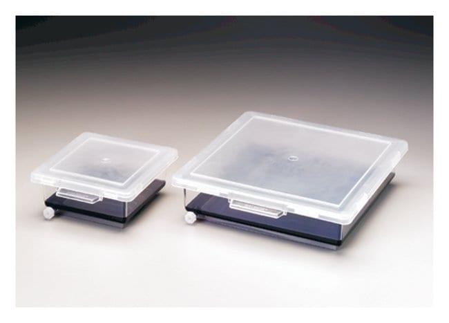 Nalgene™ Staining Boxes