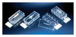 Nunc™ Lab-Tek™ II Chamber Slide™ System