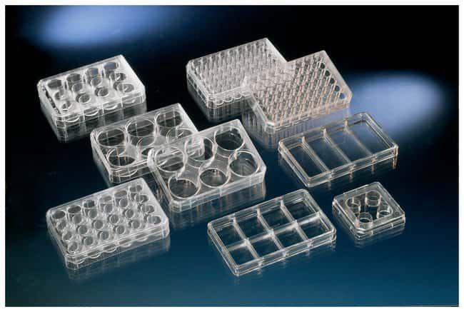 Nunc Cell Culture Treated Multidishes