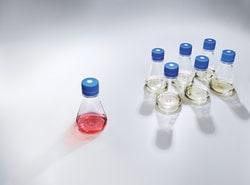 Nalgene™ Single-Use PETG Erlenmeyer Flasks with Plain Bottom: Sterile