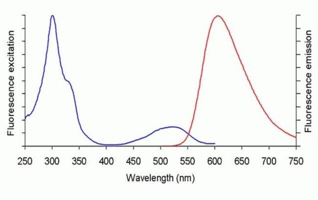 UltraPure Ethidium Bromide Fluorescence Spectra.