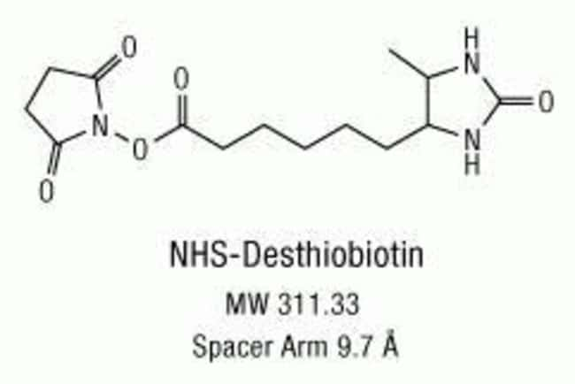Chemical structure of NHS-Desthiobiotin