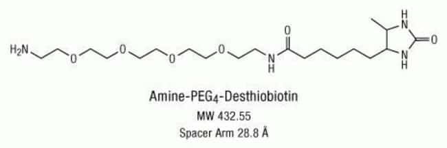 Chemical structure of Amine-PEG<sub>4</sub>-Desthiobiotin