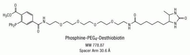 Chemical structure of Phosphine-PEG<sub>4</sub>-Desthiobiotin