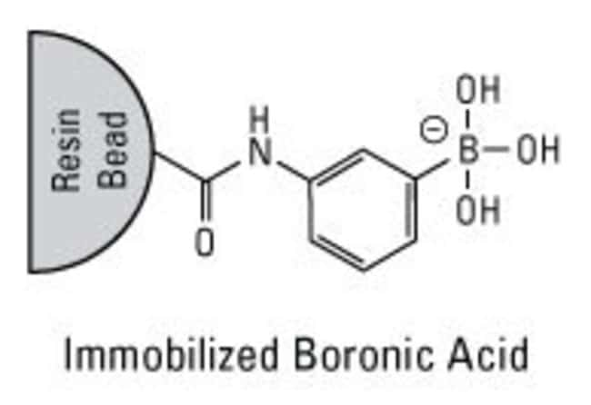 Chemical structure of Boronic Acid Resin