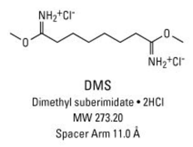 Chemical structure of DMS crosslinking reagent
