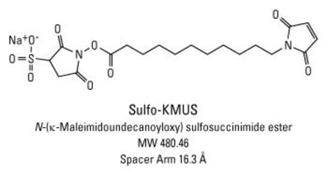 Chemical structure of Sulfo-KMUS crosslinking reagent