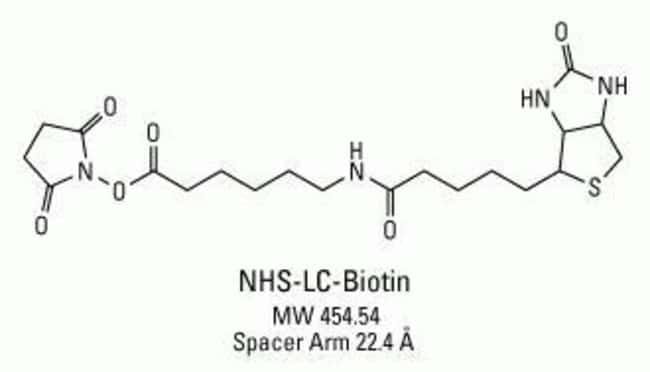 Chemical structure of NHS-LC-Biotin