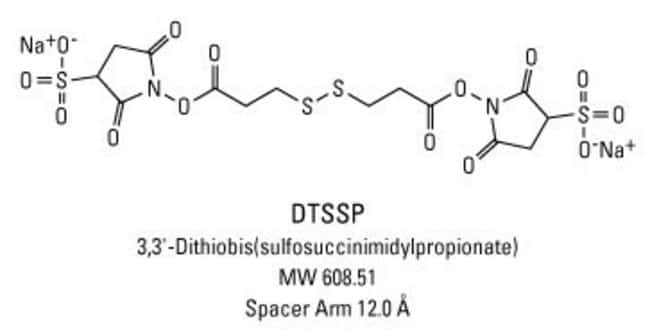 Chemical structure of DTSSP crosslinking reagent