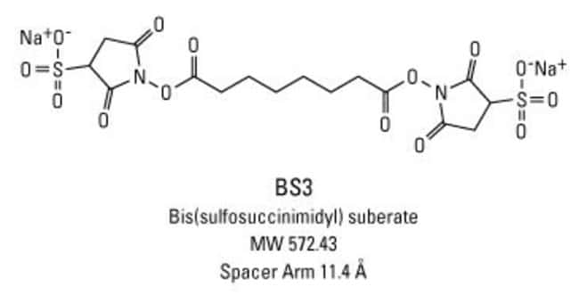 Chemical structure of BS3 crosslinking reagent