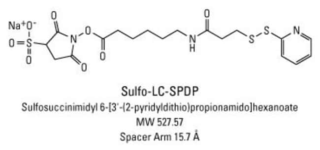Chemical structure of Sulfo-LC-SPDP crosslinking reagent