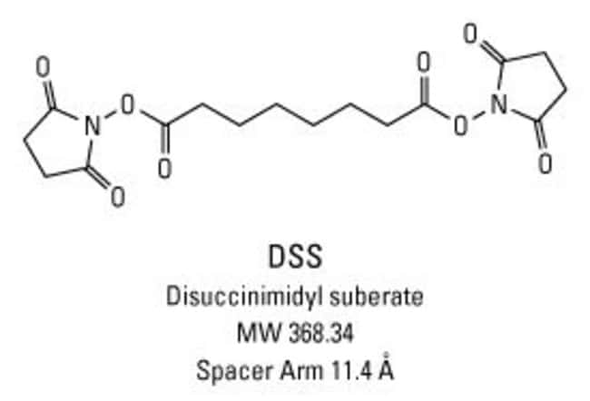 Chemical structure of DSS crosslinking reagent