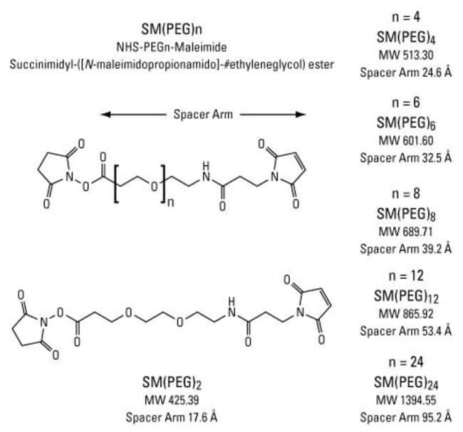 Chemical structures of SM(PEG)n crosslinking reagents