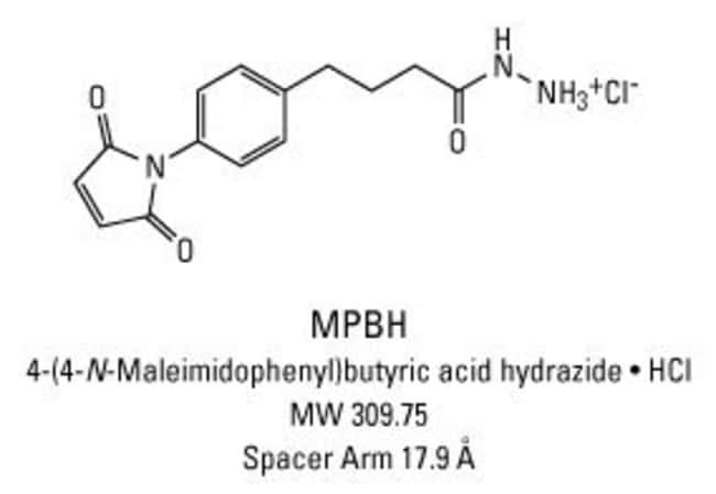 Chemical structure of MPBH crosslinking reagent