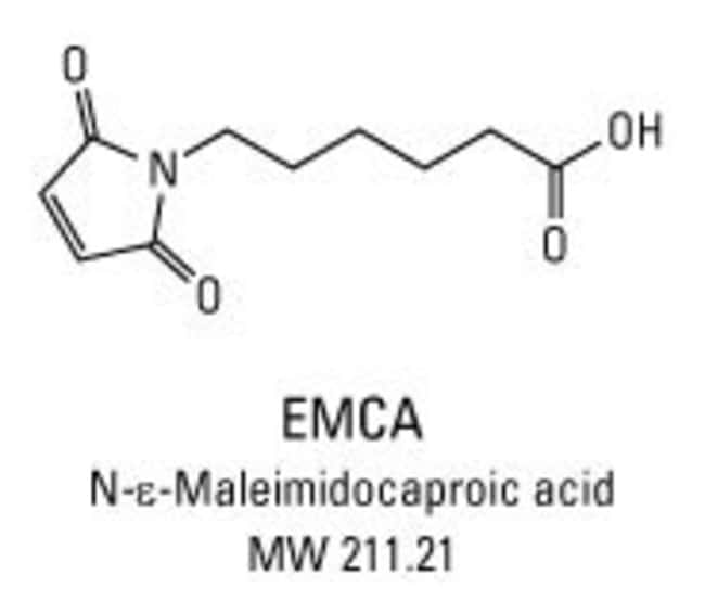 Structure and properties of EMCA: