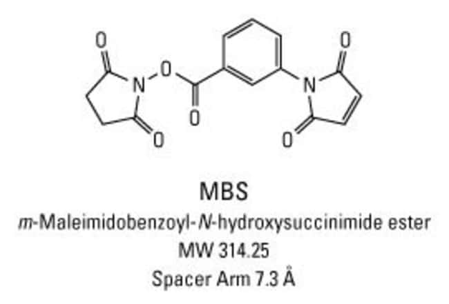 Chemical structure of MBS crosslinking reagent