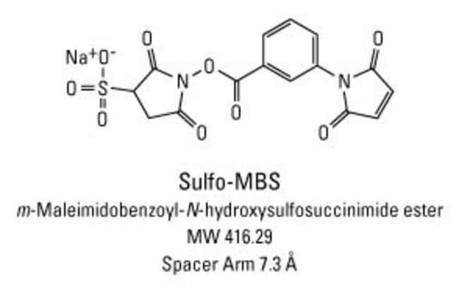Chemical structure of Sulfo-MBS crosslinking reagent