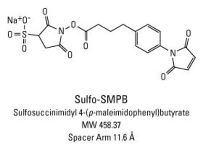 Chemical structure of Sulfo-SMPB crosslinking reagent