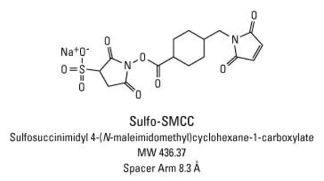 Chemical structure of Sulfo-SMCC crosslinking reagent