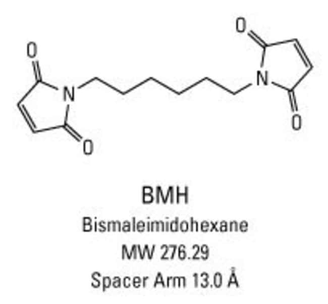 Chemical structure of BMH crosslinking reagent