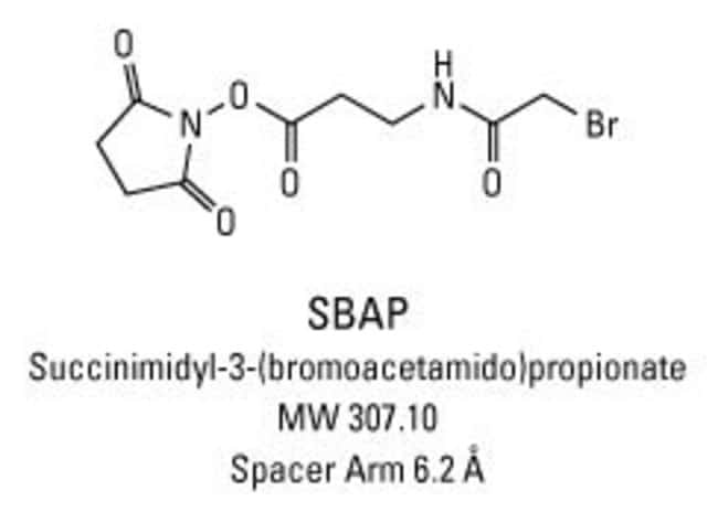 Chemical structure of SBAP crosslinking reagent
