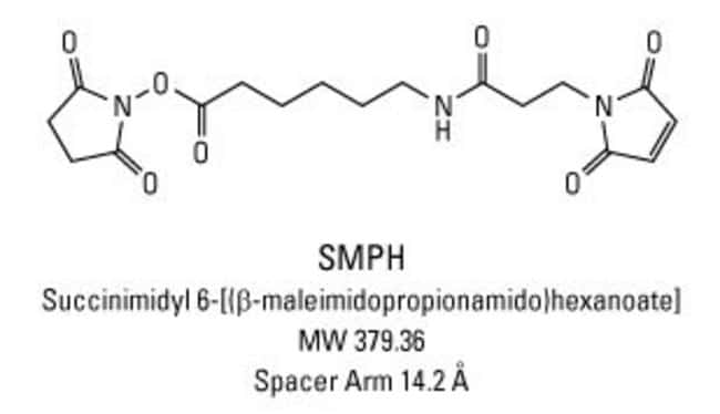 Chemical structure of SMPH crosslinking reagent