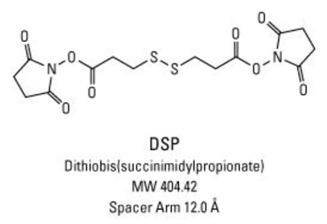 Chemical structure of DSP crosslinking reagent