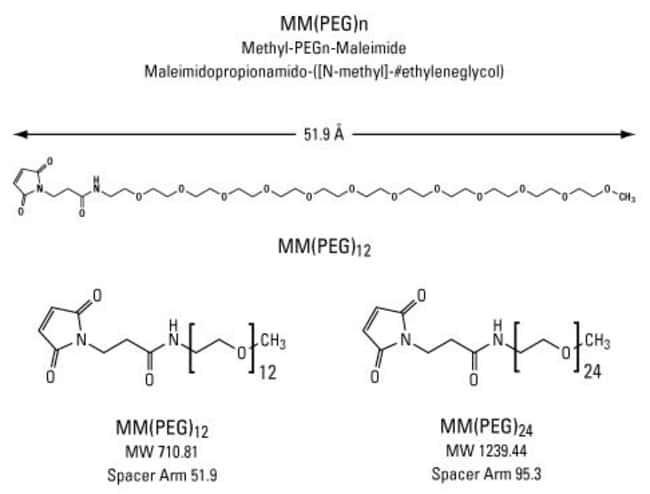 Chemical structures of Methyl-PEG-Maleimide reagents, MM(PEG)n
